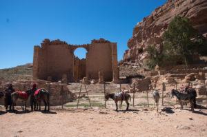 Petra - parkoviště oslíků