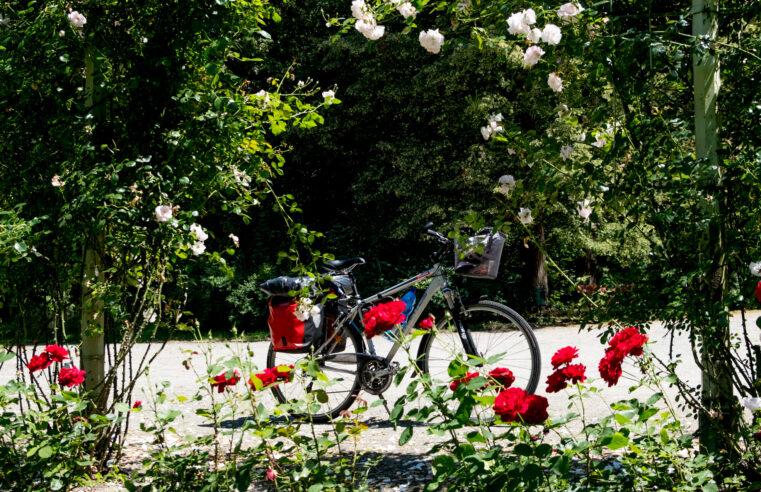 Kroměříž a Velehrad aneb jak se z pohodové cyklotour stala nevydařená zátěžová turistika