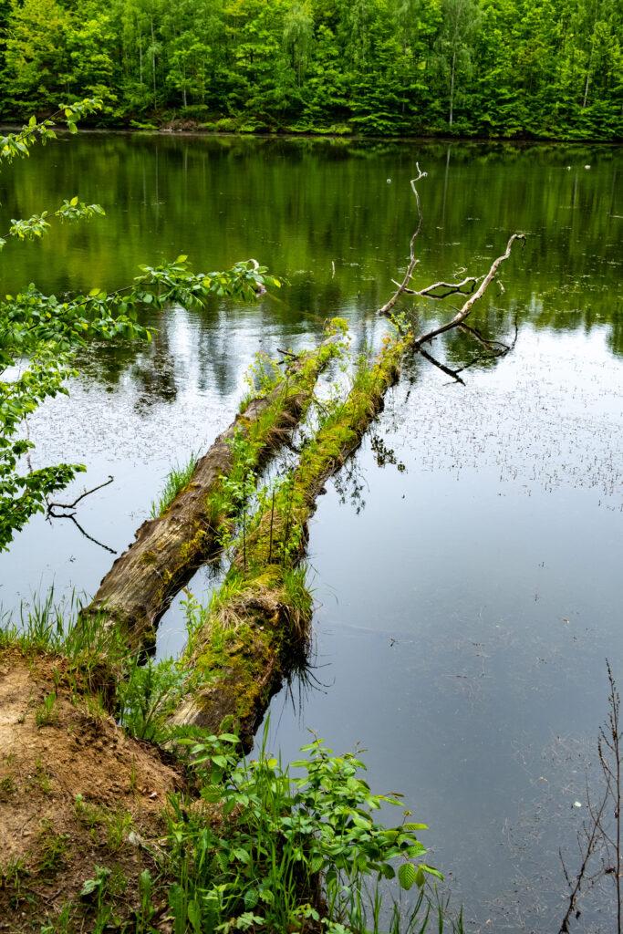 Klechtávecký rybník